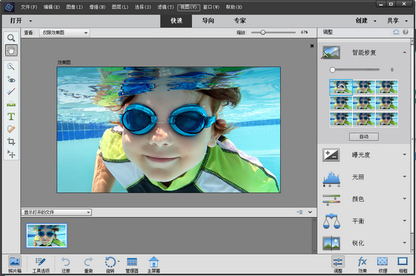 adobe photoshop elements2020