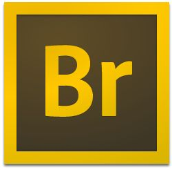 adobe bridge cc2020破解补丁